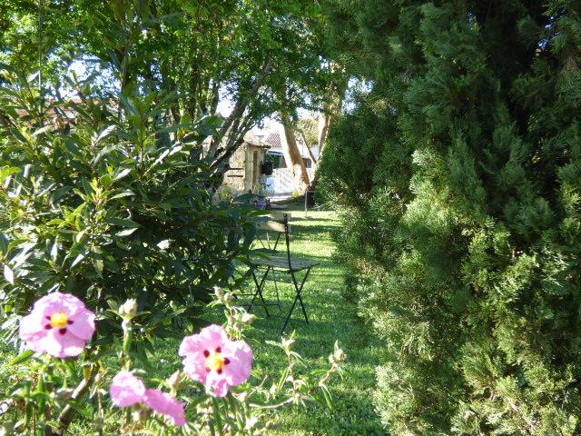 Vue du jardin au Coeur des Vignes Pauillac
