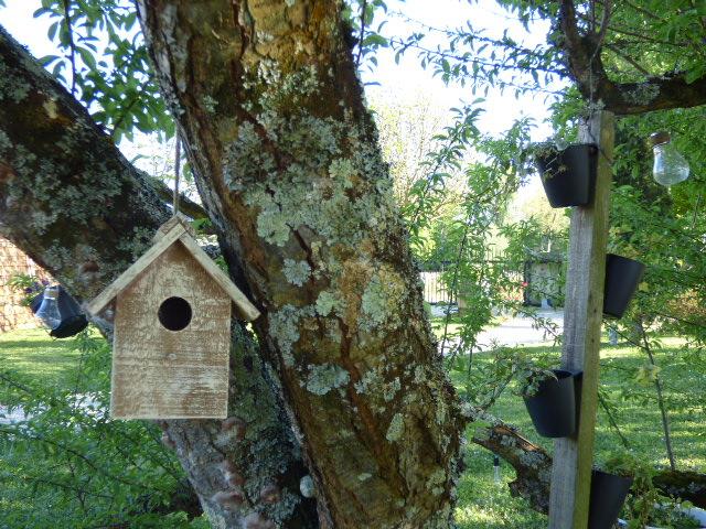 La cabane des oiseaux au Coeur des Vignes Pauillac