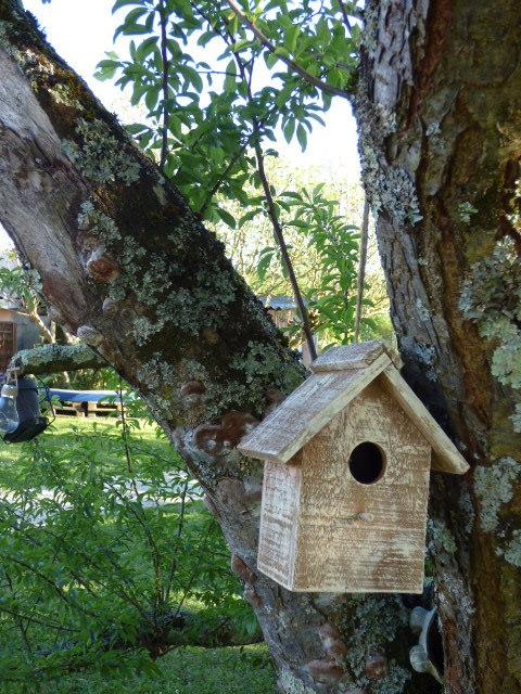La maison des oiseaux au Coeur des Vignes Pauillac